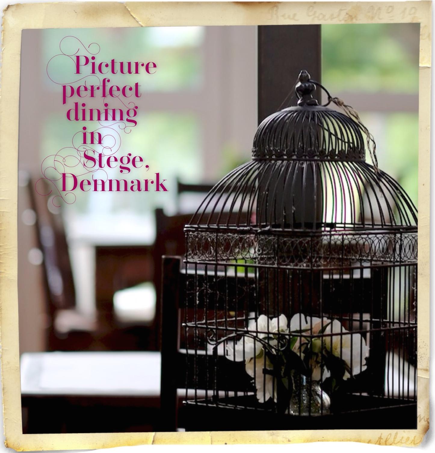 stoberiet_stege_feature_image_02